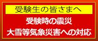 banner_n02.png
